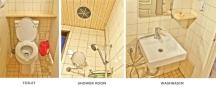 Toilet, Basin, Shower